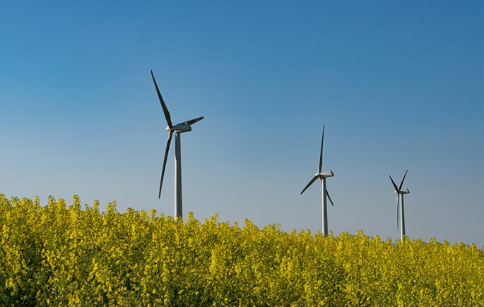 wind-turbine-generator